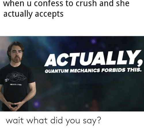 what did you say: wait what did you say?