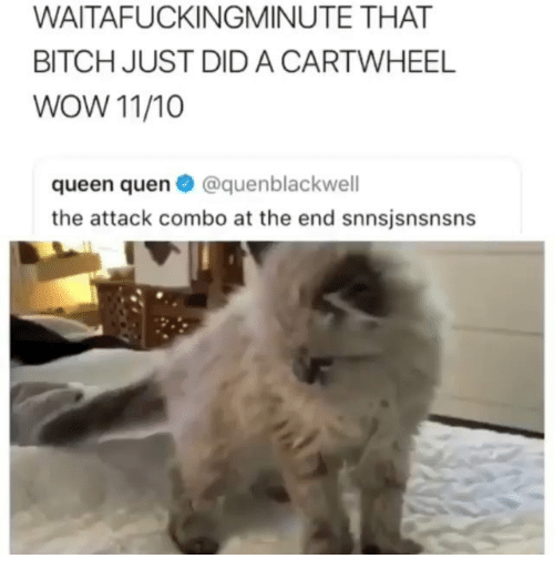cartwheel: WAITAFUCKINGMINUTE THAT  BITCH JUST DID A CARTWHEEL  WOW 11/10  queen quen@quenblackwell  the attack combo at the end snnsjsnsnsns