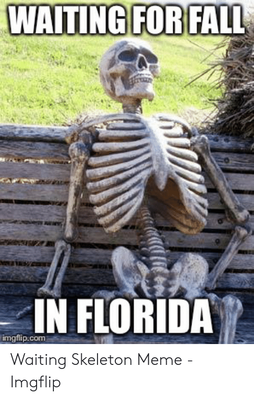 Fall In Florida: WAITING FOR FALL  IN FLORIDA  imgflip.com Waiting Skeleton Meme - Imgflip