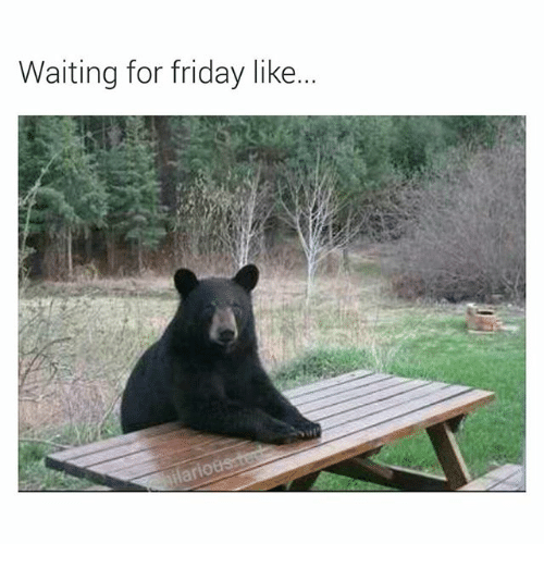 waiting for friday like 2300136 waiting for friday like friday meme on sizzle