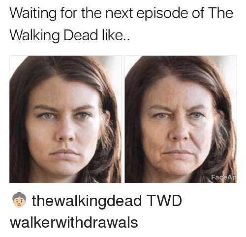 Memes, The Next Episode, and The Walking Dead: Waiting for the next episode of The  Walking Dead like.  FageAp 👵🏼 thewalkingdead TWD walkerwithdrawals