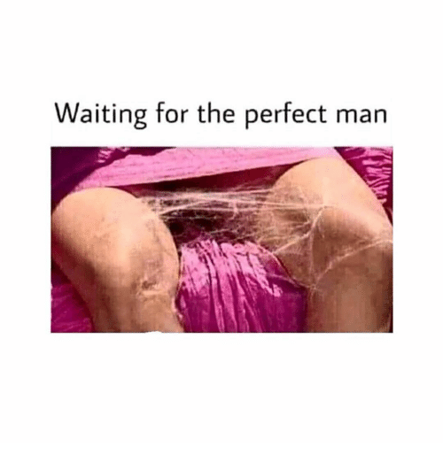 Girl Memes, Waiting..., and Man: Waiting for the perfect man