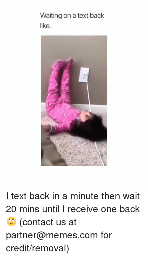 Dank, Memes, and Text: Waiting on a text back  like.. I text back in a minute then wait 20 mins until I receive one back 🙄  (contact us at partner@memes.com for credit/removal)