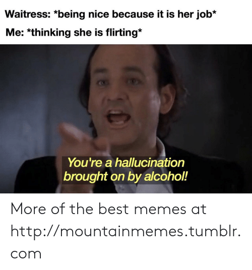 Being Nice: Waitress: *being nice because it is her job*  Me: *thinking she is flirting*  You're a hallucination  brought on by alcohol!  18 More of the best memes at http://mountainmemes.tumblr.com