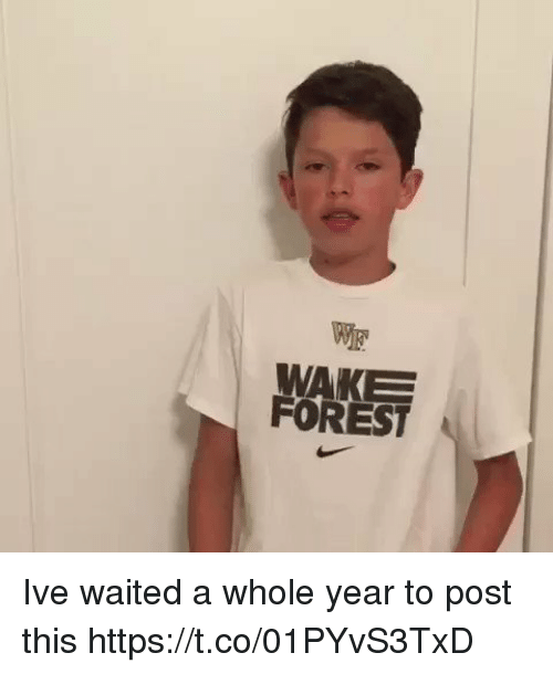 Girl Memes, Forest, and Wake Forest: WAKE  FOREST Ive waited a whole year to post this https://t.co/01PYvS3TxD