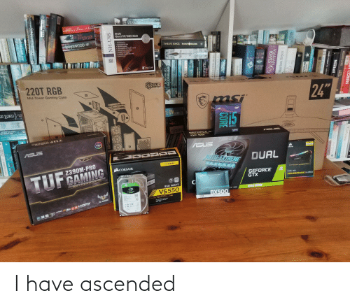 quicksilver: WAKE  MARK  LAWRENCE Prince f  NH-U9S  95mm U-TYPE TOWER COOLER  SNAKEWOOD  TWELVE KINGS BRADLEY  BEAULIEU  INPI  RDER  WAR  SUSHI  OHN  RAY  MARIAN GINNER  KEVES  ంతి  MAPAN  KEVES  MARIAN  KEYES  R.  the  other  Side  220T RGB  C  @CUE  Storu  Mid-Tower Gaming Case  OURN  24  STAY  BR LORD m  E STA..u.  STR U  intel  15  SCOTT ROHAN  OF MIDDLE AR  DHAGON PRIC  UNLOCKED  GEFO RCE G  1860  5-9SOOK  TEATIST  AURA  ONAS  ASUS  ASUS  Dee4  2XAA/ 9G  CORSAIR  AUTO-EXTREME  DUAL  Perfected Automated Manufacturing  VS SERIES  2390M-PRO  CORSAIR  TUFCAMING  GEFORCE  GTX  crucial  nviDA  MOTHERBOARD  80  SCUE  VENGEANCE PRO  (3.  QatAGATE  VS550  PLUS  550 WATT  BARRACUDA  VS 550  1660 Super  X2ANSE  BX500  TAYION ATE FUENTE D ALIMENTACION ATX  AT NETZTER O AN AX AT  TUF GAMING  120G8  25-INCH SOLID STATE DRIVE  HDMI  dts  wwDIA AMDA  SLI  DAX CE  COBEN  Tictorian  MERCEDES LACKEY ALTA  Mankell  Mary  josegh o'cenns the sales ma  THE FL  william sutcliffe  HOMER H H  marian  keves  Marian Keyes  MARIAN  КЕУES  Popular Mus  Woman S  marian  CORE  QUICKSILVER  ZENITH  The Gadger of Berwsi  STAN NICHOLL  SHOWGAS  STAN NICHOLLS  ADAM NIC  THE WAR OF THE  110 ML  LARRY SVEN AD  LARRY RIVE  93rin  RY NIVEN RON STAR  AMIVEN  THE DRAGONS  OF HEOROT  S6N-HN  IRE BRAND  STLLSTOD  ON ALEX CROSS  SINS EMPIRE  BRIAN MECLELAN  THE BABES IN THc WOOD  MELANIE RAWN  TI TTAN MAV  INTERVENTKON  ROBERT RANKIS  ODESIT  SPRO I have ascended