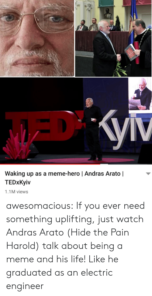 Graduated: Waking up as a meme-hero | Andras Arato |  TEDxKyiv  1.1M views awesomacious:  If you ever need something uplifting, just watch Andras Arato (Hide the Pain Harold) talk about being a meme and his life! Like he graduated as an electric engineer