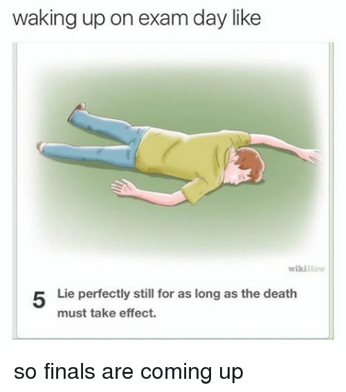 Memes, Wikihow, and 🤖: waking up on exam day like  wikiHow  Lie perfectly still for as long as the death  must take effect. so finals are coming up