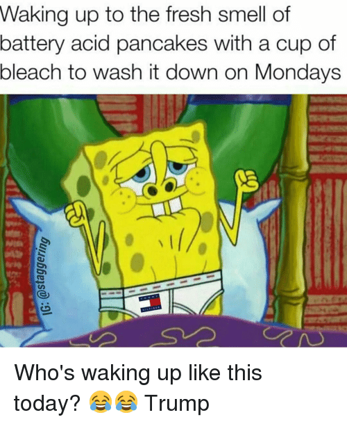 Fresh, Funny, and Mondays: Waking up to the fresh smell of  battery acid pancakes with a cup of  bleach to wash it down on Mondays  GS Who's waking up like this today? 😂😂 Trump