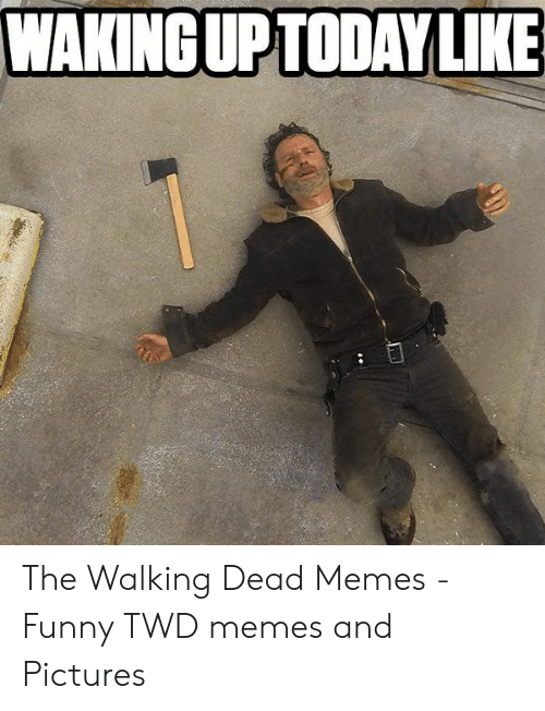 the walking dead memes: WAKINGUPTODAY LIKE The Walking Dead Memes - Funny TWD memes and Pictures