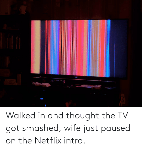 Netflix: Walked in and thought the TV got smashed, wife just paused on the Netflix intro.