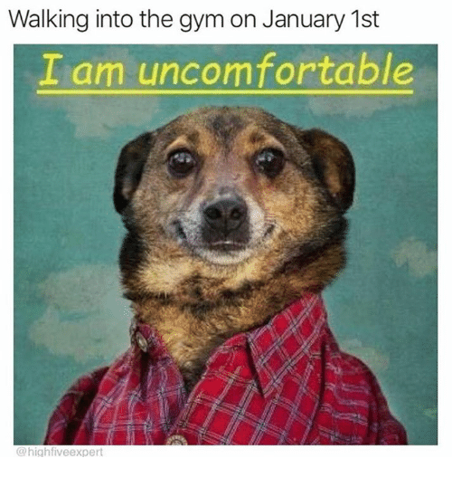 Dank, Gym, and 🤖: Walking into the gym on January 1st  I am uncomfortable  @highfiveexpert