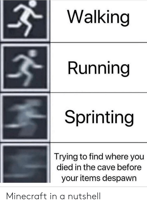 the cave: Walking  Running  Sprinting  Trying to find where you  died in the cave before  your items despawn Minecraft in a nutshell