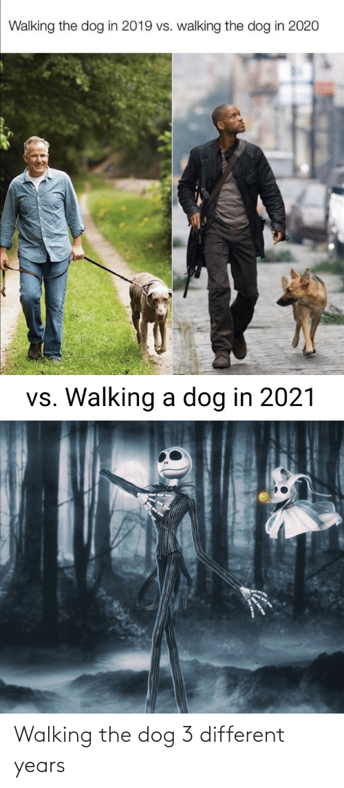 the dog: Walking the dog 3 different years