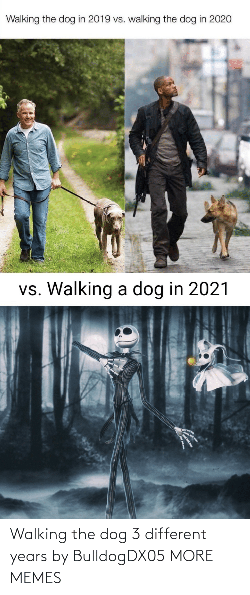 the dog: Walking the dog 3 different years by BulldogDX05 MORE MEMES