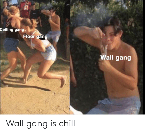 Chill: Wall gang is chill