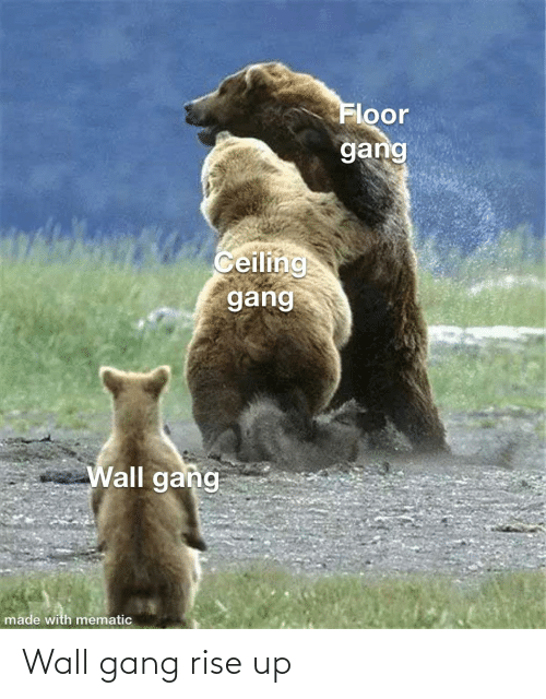rise up: Wall gang rise up