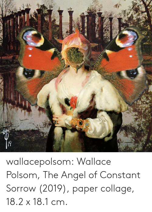 Angel: wallacepolsom: Wallace Polsom, The Angel of Constant Sorrow (2019), paper collage, 18.2 x 18.1 cm.