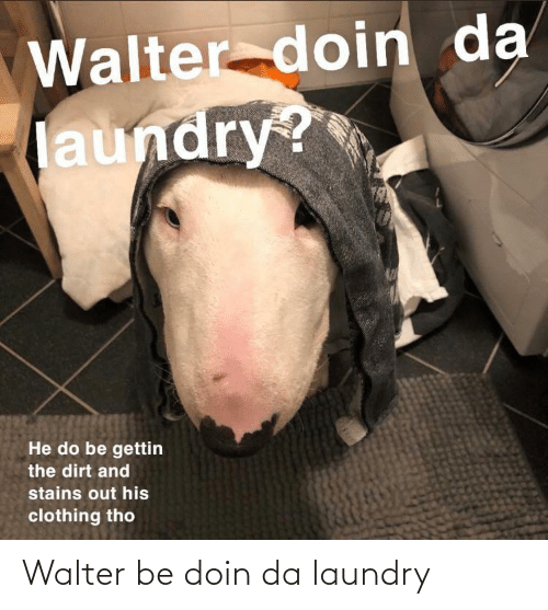 Laundry, Walter, and Doin: Walter be doin da laundry