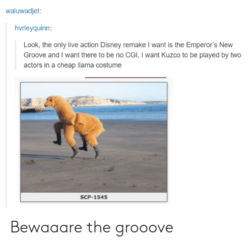 scp: waluwadjet:  hvrleyquinn:  Look, the only live action Disney remake I want is the Emperor's New  Groove and I want there to be no CGI, I want Kuzco to be played by two  actors in a cheap llama costume  SCP-1545 Bewaaare the grooove