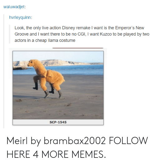 scp: waluwadjet:  hvrleyquinn:  Look, the only live action Disney remake I want is the Emperor's New  Groove and I want there to be no CGI, I want Kuzco to be played by two  actors in a cheap llama costume  SCP-1545 Meirl by brambax2002 FOLLOW HERE 4 MORE MEMES.