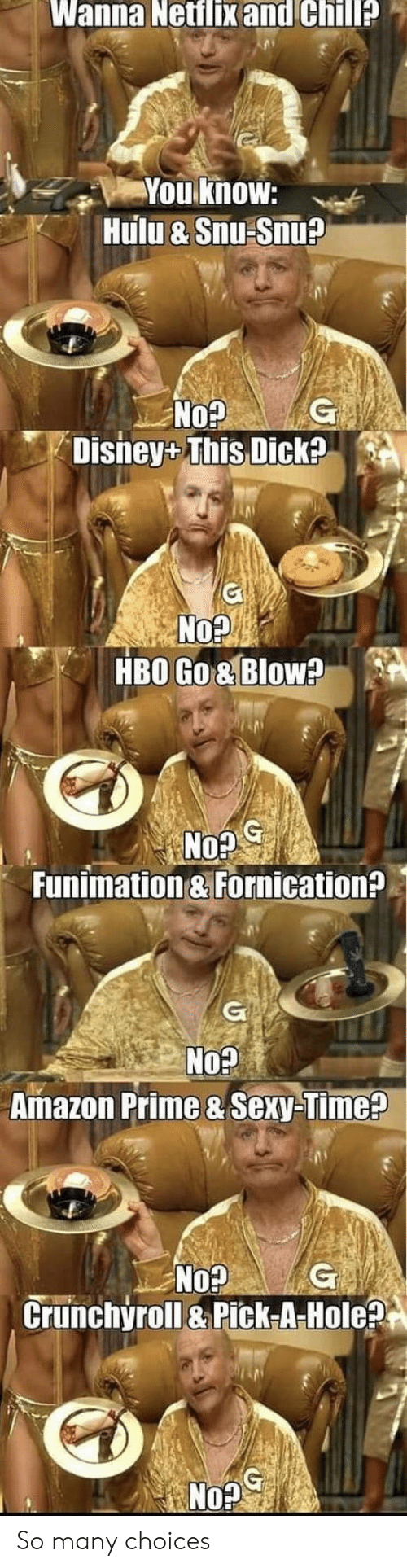 fornication: Wanna Netflix and Chill?  You know:  Hulu & Snu Snu?  G  No?  Disney+ This Dick?  No?  HBO Go& Blow?  G  No?  Funimation & Fornication?  G  No?  Amazon Prime & Sexy-Time?  No?  Crunchyroll&Pick-A-Hole?  G So many choices