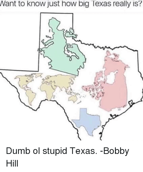 Texas: Want to know just how big Texas really is? Dumb ol stupid Texas.   -Bobby Hill
