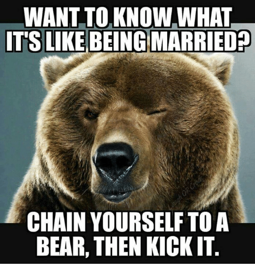 Memes, Bear, and 🤖: WANT TOKNOW,WHAT  GMARRIED?  CHAIN YOURSELF TOA  BEAR, THEN KICK IT