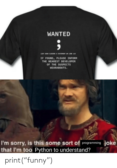 "Sort: WANTED  IF FOUND, PLEASE INFORM  THE NEAREST DEVELOPER  OF THE SUSPECTS  WEARABOUTS.  I'm sorry, is this some sort of programming joke  that I'm too Python to understand? print(""funny"")"