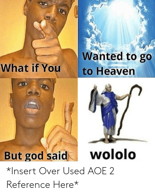 aoe 2: Wanted to go  What if You  to Heaven  wololo  But god said *Insert Over Used AOE 2 Reference Here*