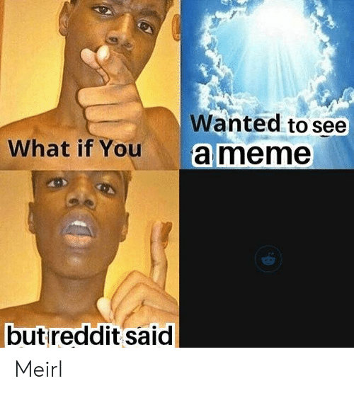 Ameme: Wanted to see  What if You  ameme  butreddit said Meirl