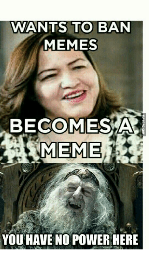 Ban Meme: WANTS TO BAN  MEMES  BECOMES  MEME  YOU HAVE NO POWER HERE