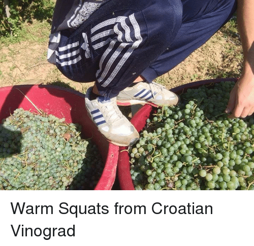 Croatian: Warm Squats from Croatian Vinograd