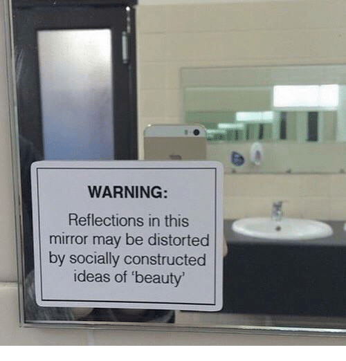Warning Reflections In This Mirror May Be Distorted By
