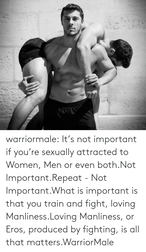 Train: warriormale:  It's not important if you're sexually attracted to Women, Men or even both.Not Important.Repeat - Not Important.What is important is that you train and fight, loving Manliness.Loving Manliness, or Eros, produced by fighting, is all that matters.WarriorMale