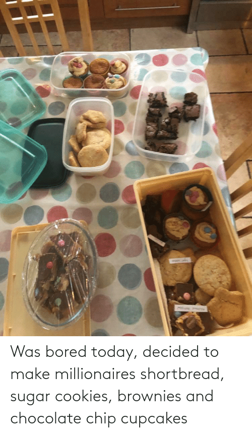 Chocolate Chip: Was bored today, decided to make millionaires shortbread, sugar cookies, brownies and chocolate chip cupcakes