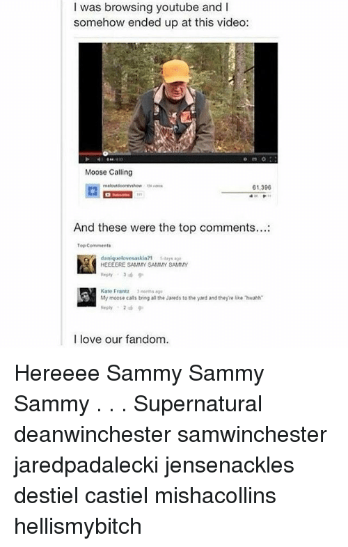 Memes, 🤖, and Top: was browsing youtube and I  somehow ended up at this video:  Moose Calling  61,390  And these were the top comments...  Top Comments  daniquelovesaskia21 saar  HEEEERE SAMMY SAMMY SAMMY  Kato Frantz 3 months  My moose cals bring aa the Jareds to the yard and theyre lke hwahh  I love our fandom. Hereeee Sammy Sammy Sammy . . . Supernatural deanwinchester samwinchester jaredpadalecki jensenackles destiel castiel mishacollins hellismybitch