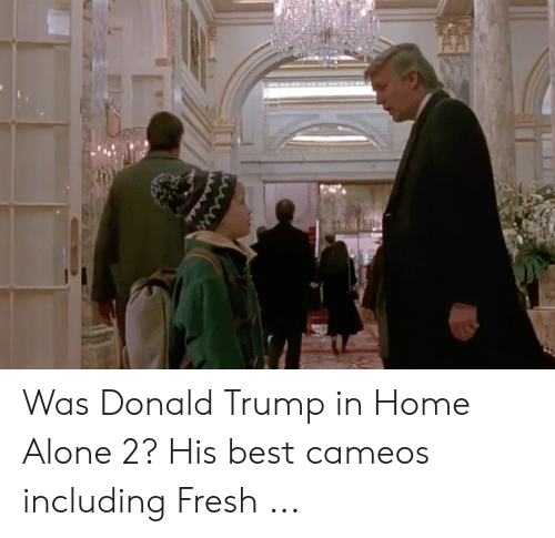 Donald Trump In Home Alone: Was Donald Trump in Home Alone 2? His best cameos including Fresh ...