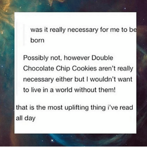 chocolate chip cookies: was it really necessary for me to be  born  Possibly not, however Double  Chocolate Chip Cookies aren't really  necessary either but l wouldn't want  to live in a world without them!  that is the most uplifting thing i've read  all day