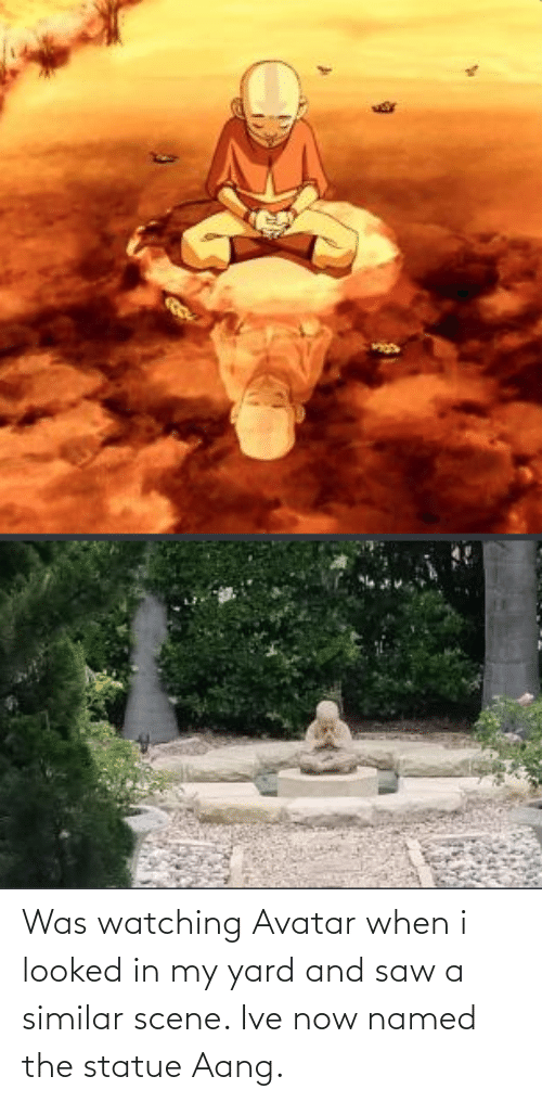 yard: Was watching Avatar when i looked in my yard and saw a similar scene. Ive now named the statue Aang.