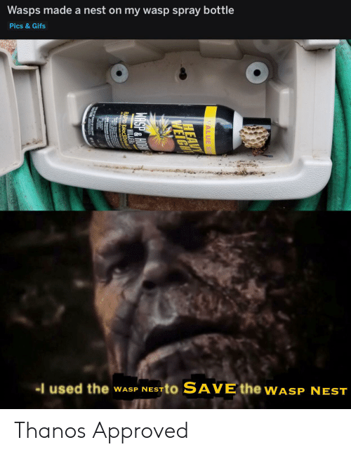 wasp nest: Wasps made a nest on my wasp spray bottle  Pics &Gifs  I used the  TO SAVE the WASP NEST  WASP NEST  VALUE S  HEAV  WEIGH  WASP&HOM  HILLER  RAPID KNOCKDOW  CNUTION EAGH OF CHELERE Thanos Approved