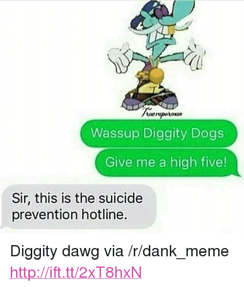 """Dank, Dogs, and Meme: Wassup Diggity Dogs  Give me a high five!  Sir, this is the suicide  prevention hotline. <p>Diggity dawg via /r/dank_meme <a href=""""http://ift.tt/2xT8hxN"""">http://ift.tt/2xT8hxN</a></p>"""