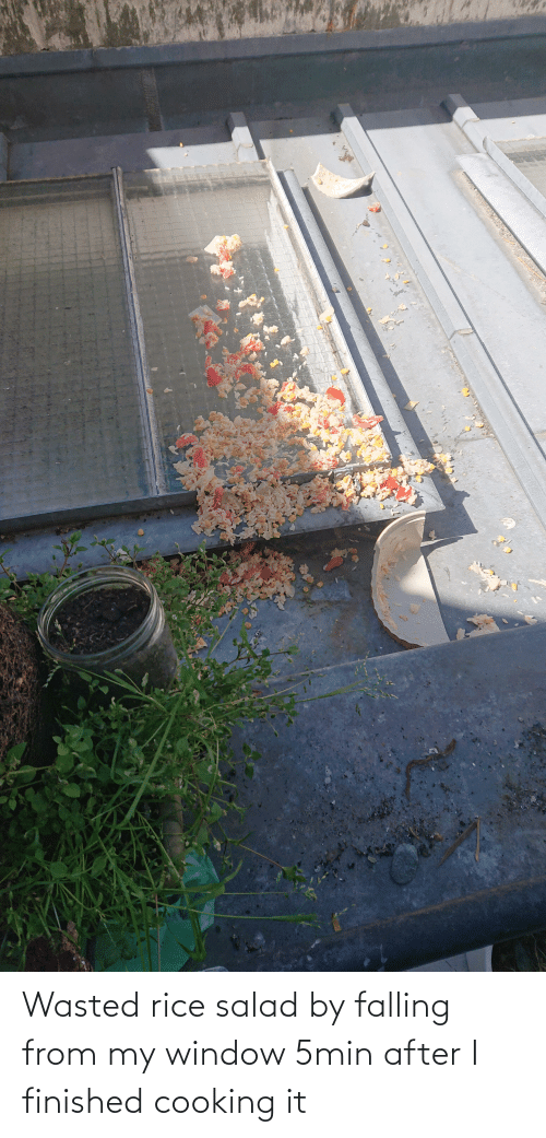salad: Wasted rice salad by falling from my window 5min after I finished cooking it