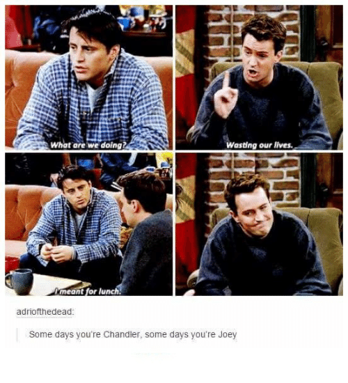Humans of Tumblr, What Ares, and Joey: wasting our lives.  What are we doing?  meant for lu  adriofthedead  Some days you're Chandler, some days you're Joey