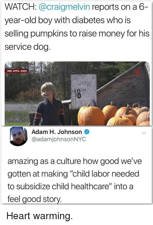 "pumpkins: WATCH: @craigmelvin reports on a 6-  year-old boy with diabetes who is  selling pumpkins to raise money for his  service dog  NBC AFFIL.KSDK  LARGE  Adam H. Johnson  @adamjohnsonNYC  amazing as a culture how good we've  gotten at making ""child labor needed  to subsidize child healthcare"" into a  feel good story. Heart warming."