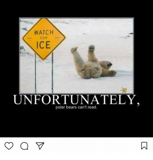 WATCH FOR ICE UNFORTUNATELY Polar Bears Can't Read   Meme ...