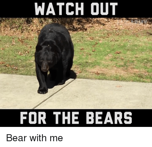 Memes, Watch Out, and Bear: WATCH OUT  FOR THE BEARS Bear with me