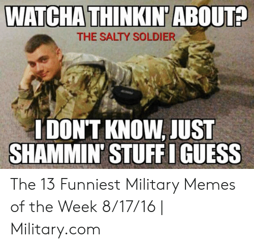13 Funniest: WATCHA THINK  N'ABOUT?  THE SALTY SOLDIER  IDON'T KNOW,JUST  SHAMMIN' STUFF I GUESS The 13 Funniest Military Memes of the Week 8/17/16 | Military.com
