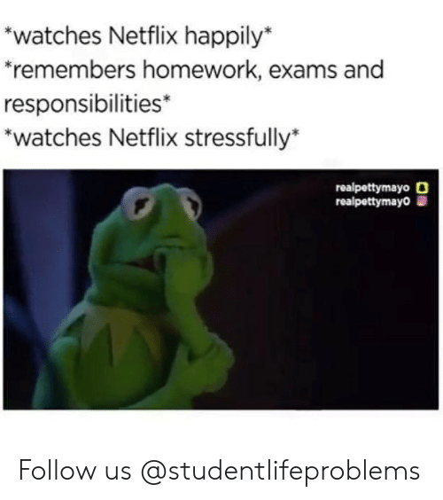 Stressfully: watches Netflix happily*  remembers homework, exams and  responsibilities*  *watches Netflix stressfully*  1  realpettymayo O  realpettymayo Follow us @studentlifeproblems​