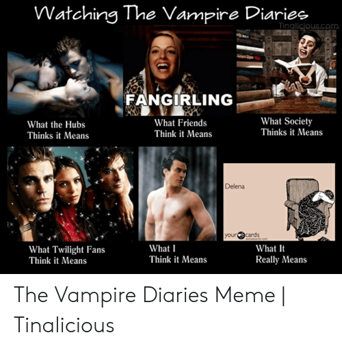 Funny Vampire Memes: Watchina The Vamrire Diariee  us.com.  FANGIRLING  What Society  Thinks it Means  What Friends  Think it Means  What the Hubs  Thinks it Means  Delena  yourcards  What It  Really Means  What I  Think it Means  What Twilight Fans  Think it Means The Vampire Diaries Meme | Tinalicious